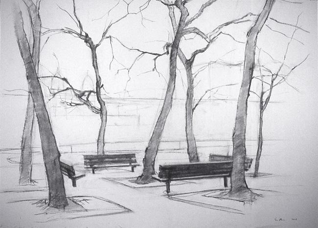 Stroud Playground Trees