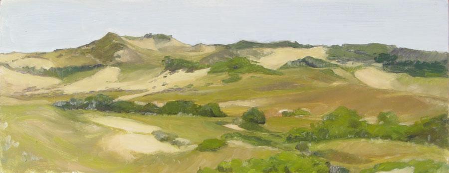 Dune Panorama